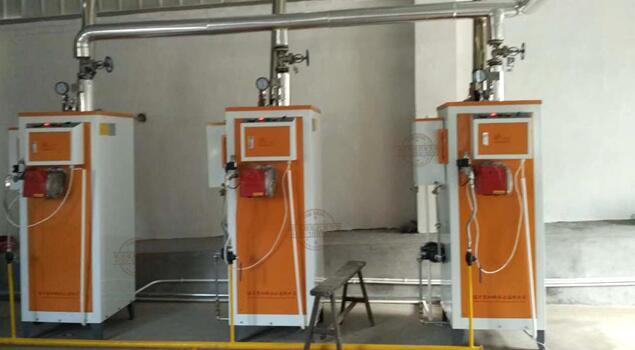 燃气蒸汽发生器