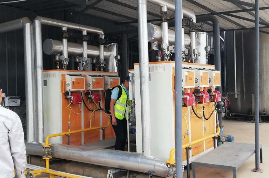 化工厂加热物料用蒸汽发生器