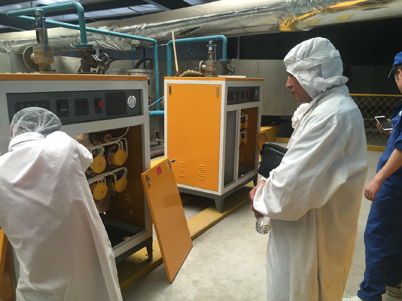 洁净蒸汽贯穿豆制品加工,食品加工蒸汽发生器如何辅助高效生产豆制品?