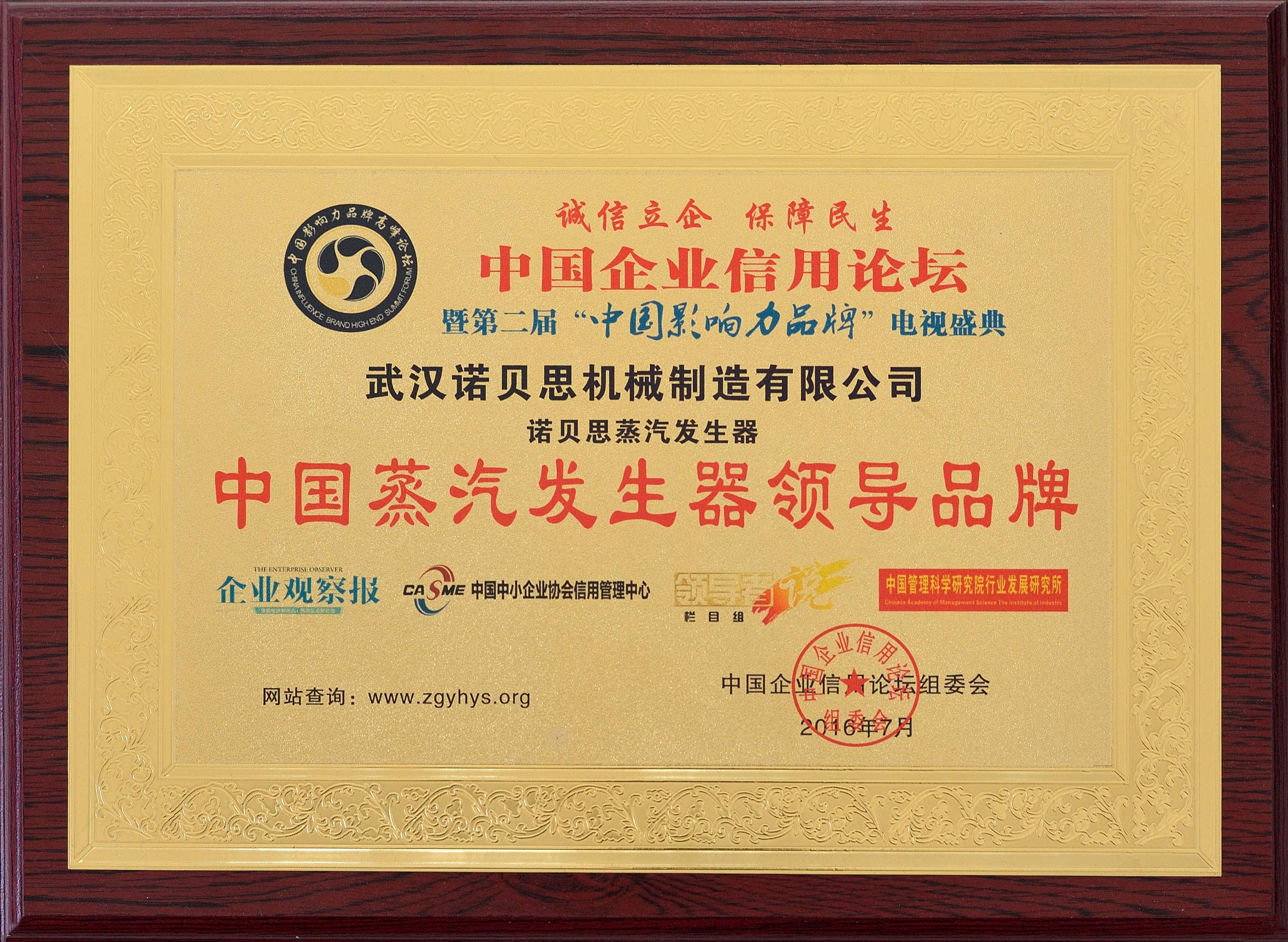 中国蒸汽发生器领导品牌
