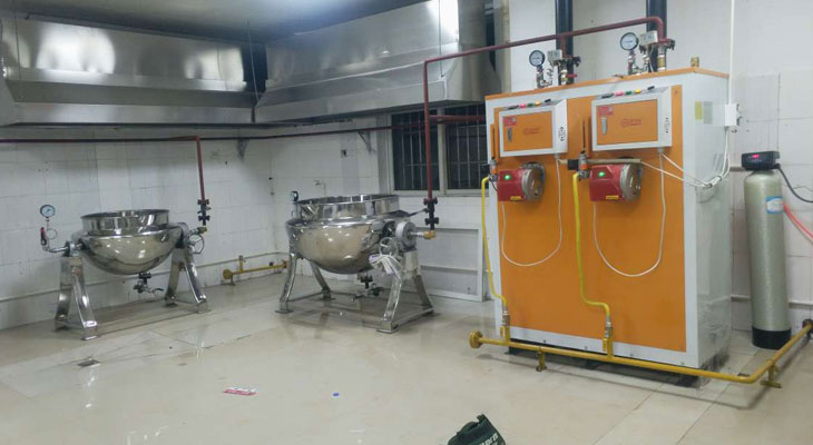 制药专用蒸汽发生器来宾中医院使用案例