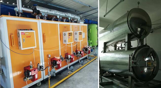 蒸汽设备那么多,食品厂用的蒸汽发生器该怎么选?