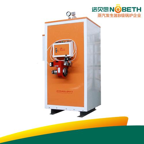 浴池加温燃气蒸汽发生器